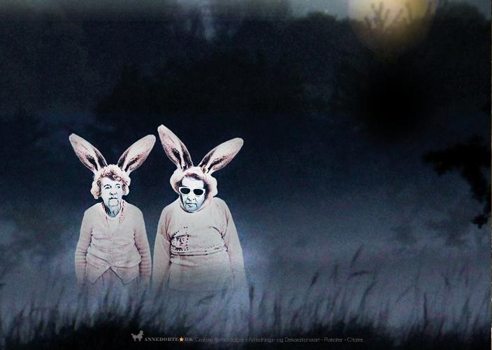 Fotocollage - Kort og plakater fra sydhavnen i København. De lyserøde kaniner.