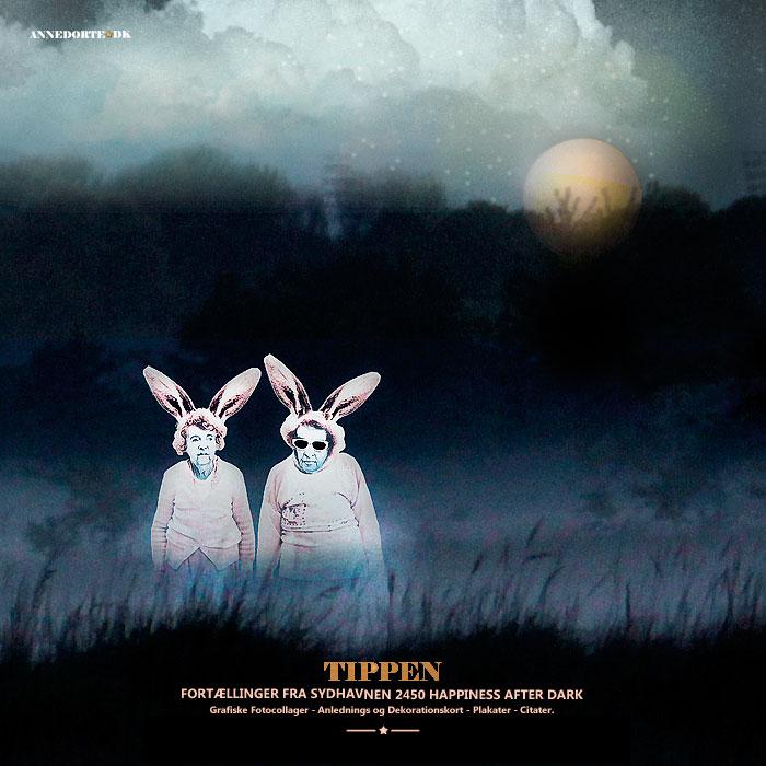 Plakater og kort fra københavn, sydhavnen med kaninfolket ved fuldmåne.